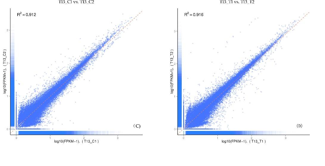 两个生物学重复中每个基因的表达水平之间的相关性
